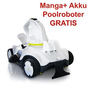 Holzpool Rechteck - Gratiszugabe Manga + Poolroboter
